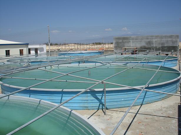 Bể chứa nước 100 - 200 m3