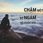 30 hinh-anh-buon-ve-cuoc-song-met-moi